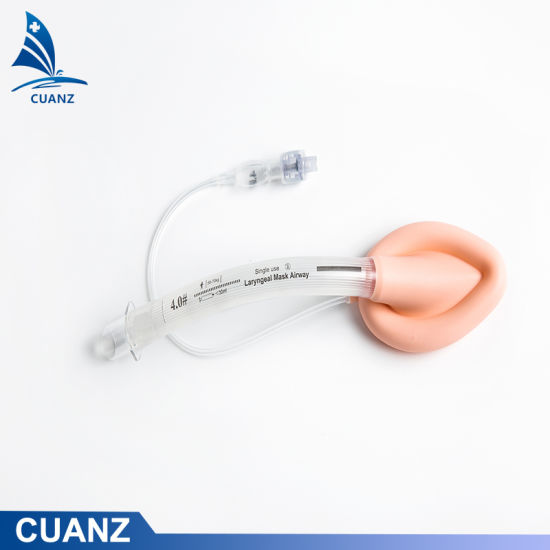 Disposable Medical Reinforced Laryngeal Mask Airway Lma Tracheal Tube